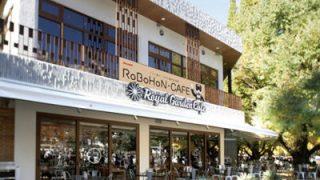 シャープとロイヤルガーデンカフェ青山がコラボ!ロボホンに触れられる「RoBoHoN CAFE」が期間限定オープン!