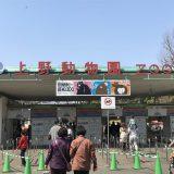 上野動物園の入園口(表門)へ到着。ちょうど12時ぐらいだったので、無料開放日とはいえ並ばずにスムーズに入園