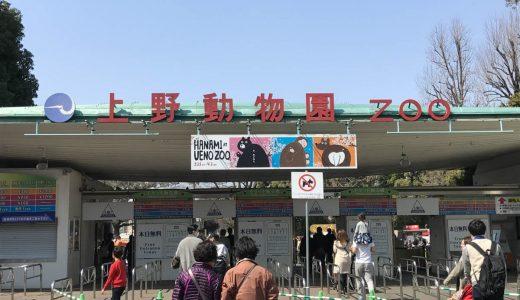 上野動物園の入園料が無料になる日っていつ?混雑状況は?入園料金・年間パスポート・無料開放日をまとめました