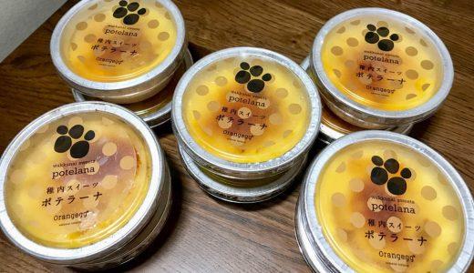 【ふるさと納税】じゃがいもで作った焼きプリン仕立て「ポテラーナ」が甘くておいしい|北海道稚内市