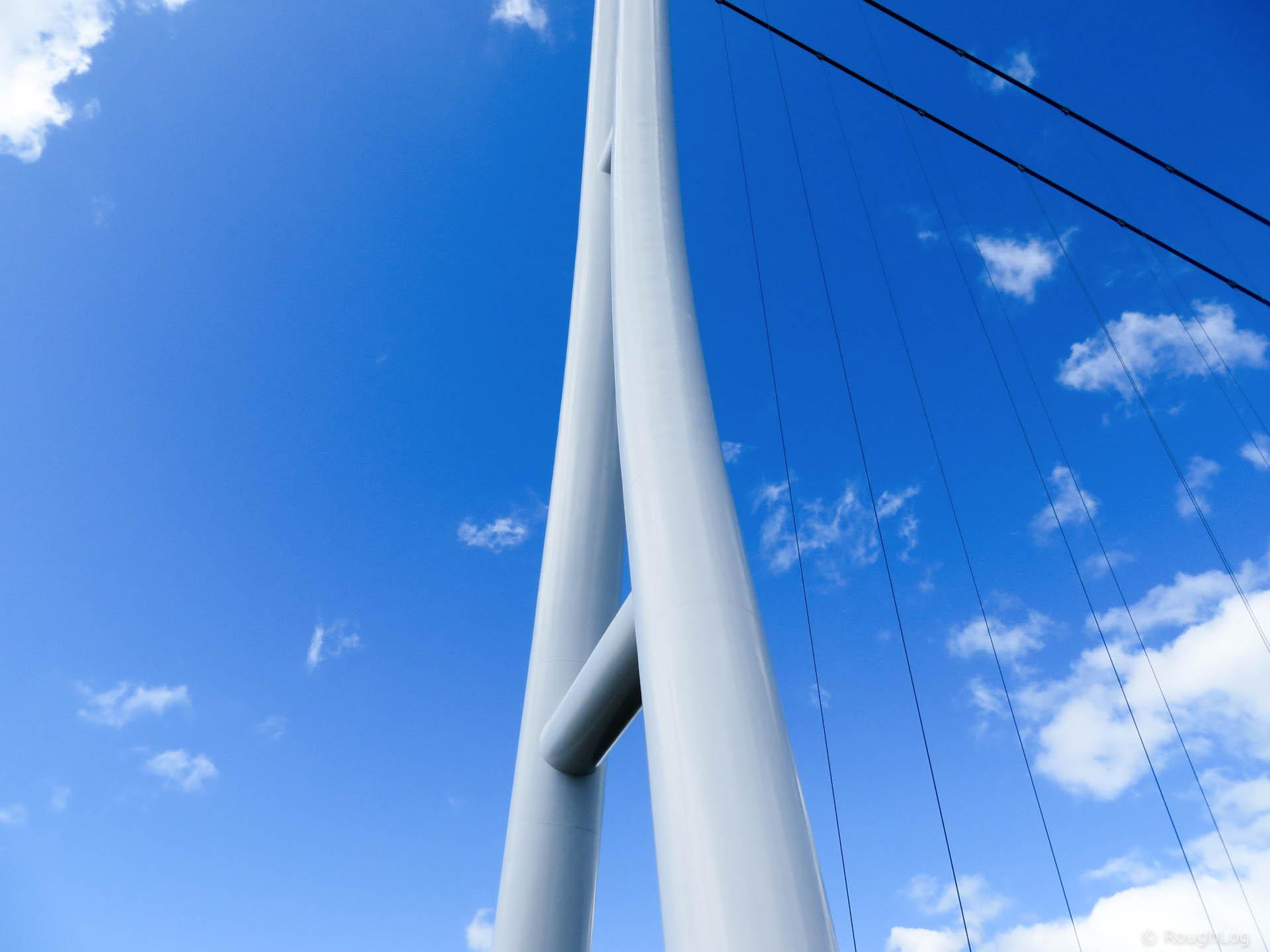 三島スカイウォーク 主塔の曲線