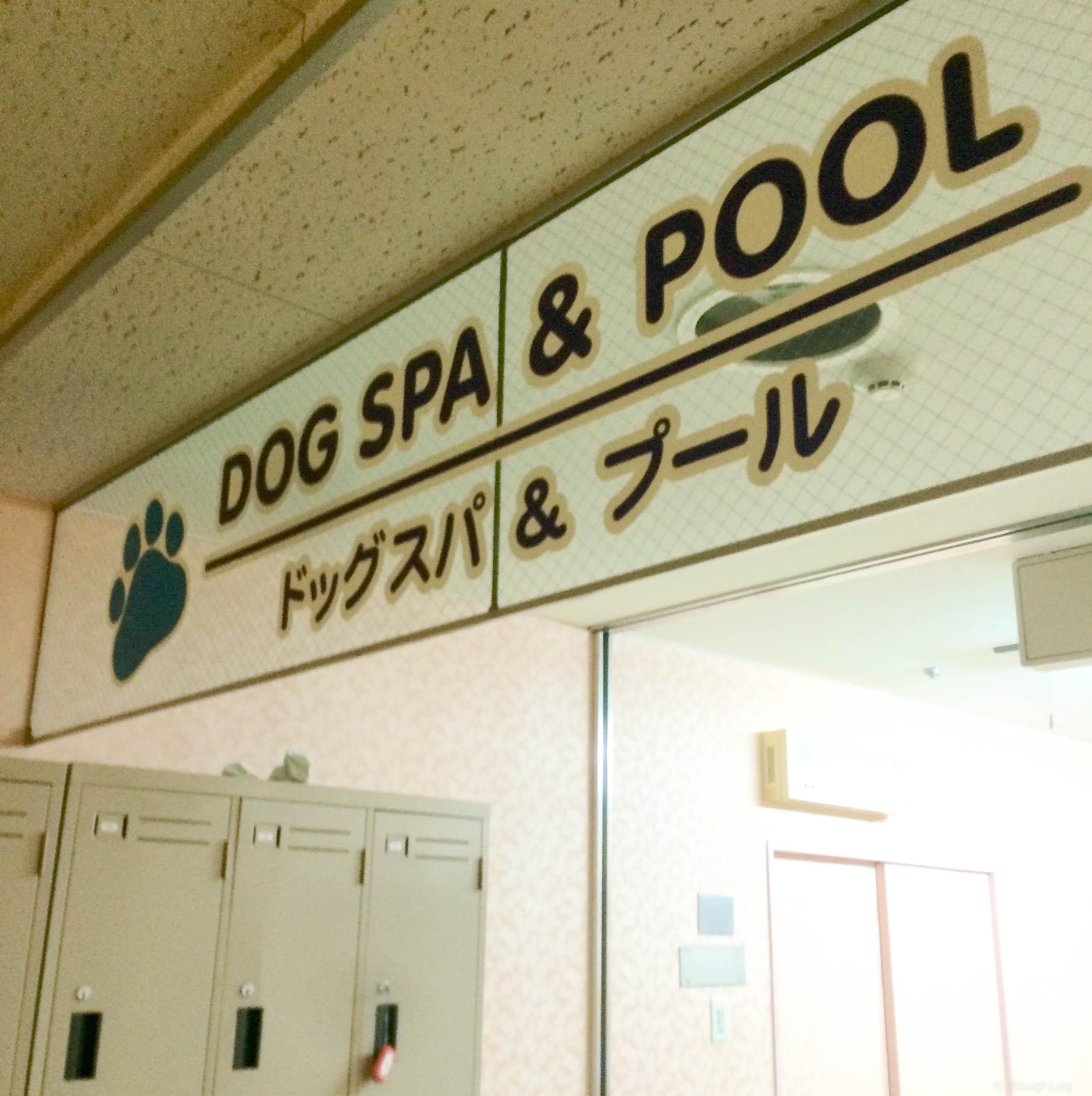 ホテル里杏 ドッグスパ&プール