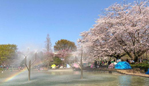 千葉県船橋市のお花見スポット|桜・噴水・虹のコラボが綺麗な「ふなばしアンデルセン公園」なら1日中遊べる