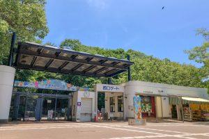 千葉市動物公園の入園料金が無料の日はいつ?混雑状況は?