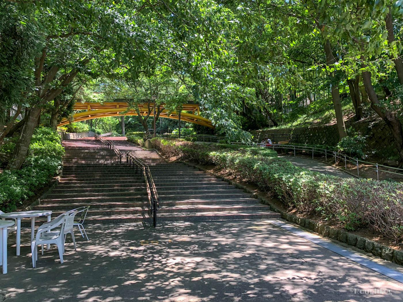 千葉市動物公園の西口ゲートより入園すると木々が並んでいる坂道