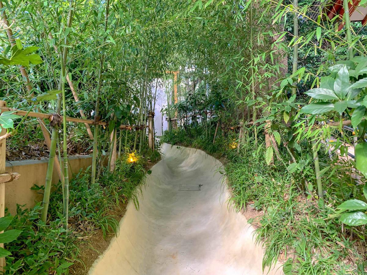 楠への小路を通って来宮神社第一大楠へ